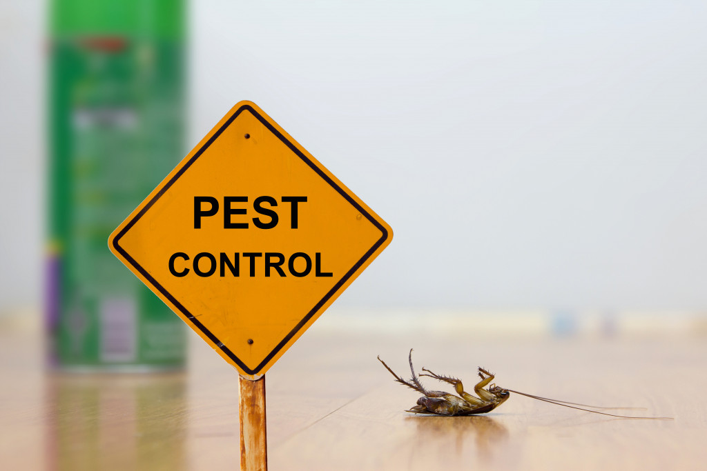 pest control sign and dead roach