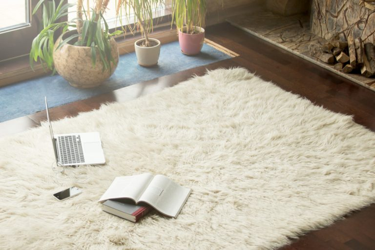 a comfy carpet with a computer and journal on top